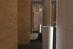Toaleta z pralnią  od wejścia w oświetleniu efektowym
